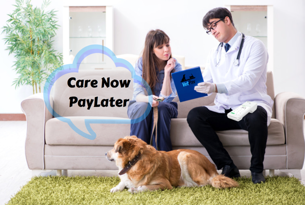 care now pay later
